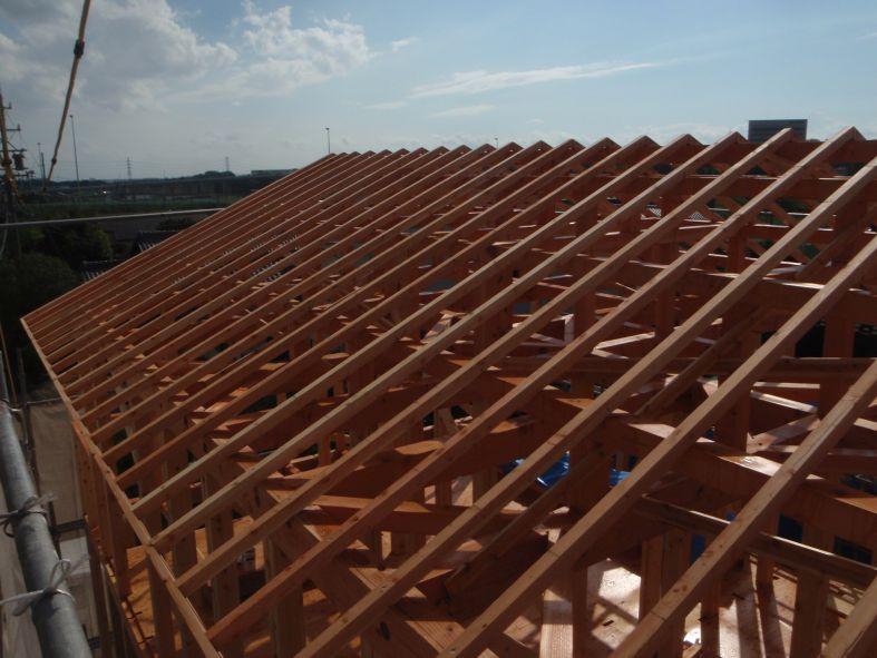 屋根垂木P8260072.JPG