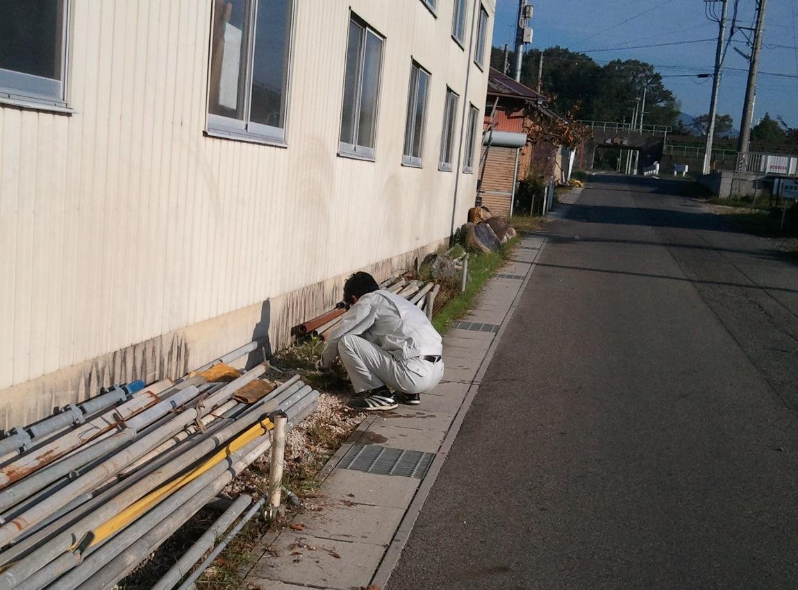 2011-10-24 07草取り